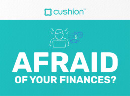 Cushion Afraid of Your Finances graphic